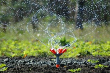 Irrigation Management & Installation
